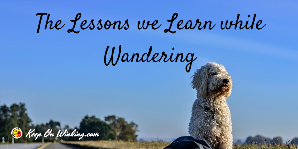 lessons-we-learn-while-wandering